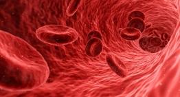 Как оценить у себя риск стенокардии и инфаркта