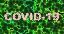 Тестирование на антитела к COVID-19